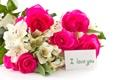 Картинка цветы, розы, орхидеи, признание, карточка