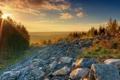 Картинка трава, солнце, деревья, закат, природа, камни, фото