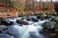 Картинка природа, пейзаж, осень, вода