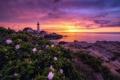 Картинка закат, море, маяк