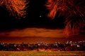 Картинка огни, города, ночного