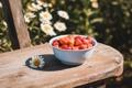 Картинка лето, природа, настроение, еда, ромашка, клубника, ягода
