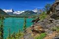 Картинка деревья, горы, озеро, Glacier National Park, Saint Mary Lake, Montana