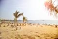 Картинка песок, пляж, солнце, пальмы, люди, Европа, Beach