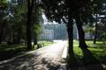Картинка лето, деревья, парк, собор, Кишинев