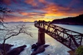 Картинка море, небо, закат, дерево, скалы, мост в никуда