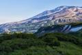 Картинка трава, горы, природа, Россия, кусты, Камчатка, Kamchatka