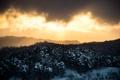 Картинка зима, лес, небо