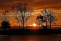 Картинка небо, солнце, облака, деревья, закат, силуэт, водоем
