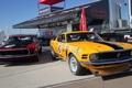 Картинка Mustang, Ford, мустанг, Boss 302, Goodyear, форд, наклейки