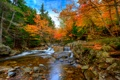 Картинка осень, лес, небо, деревья, река, камни, поток