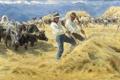 Картинка поле, пейзаж, горы, люди, работа, картина, урожай