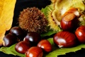 Картинка каштан, осень, лист, семена