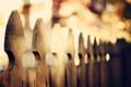 Картинка осень, цвета, макро, фото, забор, размытость, деревянный