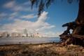 Картинка дома, Майами, Флорида, Miami, florida, отели, vice city