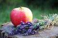 Картинка цветы, яблоко, фрукт, лаванда, плод