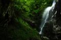 Картинка зелень, лес, природа, камни, водопад