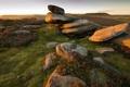 Картинка поле, свет, природа, камни