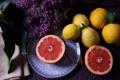 Картинка апельсин, фрукты, лимоны, сирень