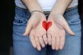 Картинка сердце, девушка, рисунок, руки, ладони