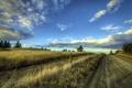 Картинка пейзаж, забор, дорога
