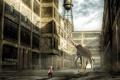 Картинка ситуация, мальчик, монтаж, жирафа