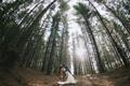 Картинка лес, солнце, деревья, Love, Beautiful, невеста, Wallpaper
