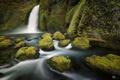 Картинка лес, природа, река, камни, водопад