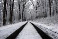 Картинка зима, дорога, лес
