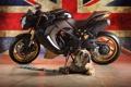 Картинка собака, флаг, бульдог, bike, triumph speed tripple bulldog, триумф