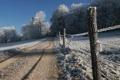 Картинка зима, иней, дорога, снег, деревья, природа
