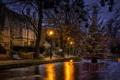 Картинка Water, night, Christmas tree, Bourton