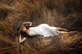 Картинка поле, лето, девушка