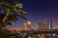 Картинка ночь, огни, пальма, дома, США, Сан-Диего