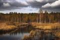 Картинка лес, пейзаж, осень, озеро, природа