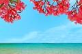 Картинка море, небо, пейзаж, цветы