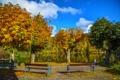 Картинка осень, деревья, скамейка, природа, река, фото, Германия