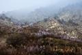 Картинка горы, природа, россия, кавказ, дмитрий чистопрудов, дагестан
