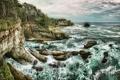 Картинка море, деревья, скалы, побережье