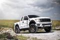 Картинка джип, форд, ADV.1, Camo Ford Raptor, Wheels Boutique