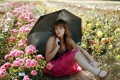Картинка девушка, цветы, зонт