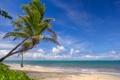Картинка море, остров, небо, облака, пальмы