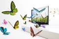 Картинка экран, крылья, бабочки, изображение