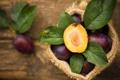 Картинка листья, фрукты, сливы