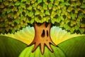 Картинка листья, ветки, лицо, корни, дерево, холмы, рисунок