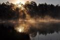 Картинка вода, солнце, отражение, утро, Флорида, испарение, Дак пруд