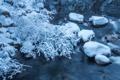 Картинка зима, снег, природа, река, камни