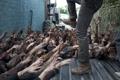 Картинка despair, The Walking Dead, kicking, zombies