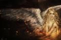 Картинка девушка, крылья, ангел, art, angel