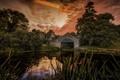 Картинка небо, деревья, озеро, дом, отражение, куст, зеркало